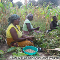 Cambine Agriculture Program